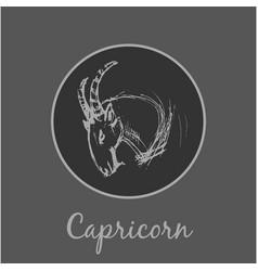 Capricorn astrological zodiac symbol horoscope vector