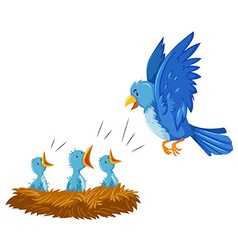 Bird and its babies in the nest vector