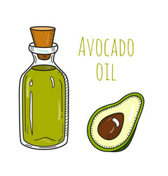 Colorful hand drawn avocado oil bottle vector