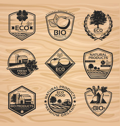 vintage natural labels collection vector image