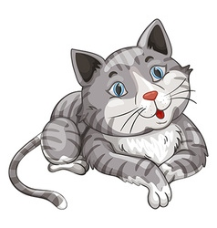 Gray cat on white background vector image