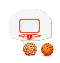 Colored Basketball Composition vector image