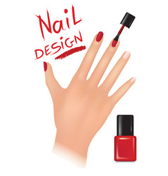 nail polish design beauty salon background womans vector image vector image