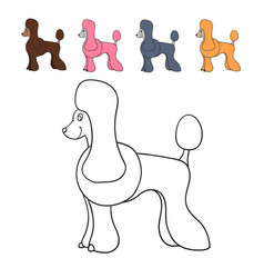 set of cute cartoon poodles isolated on white vector image