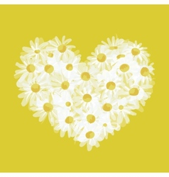 Summer bouquet heart shape made from daisy sketch vector image