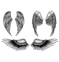 wings set 6 vector image vector image