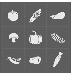 White vegetable icon set on grey background vector