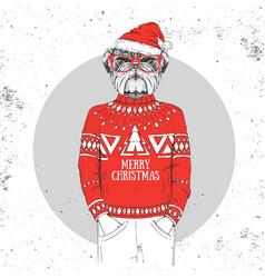 christmas hipster fashion animal bulldog vector image vector image