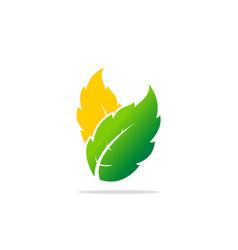green leaf botany organic logo vector image