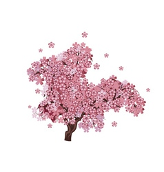 Cherry blossom tree2 vector