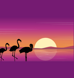 Art flamingo silhouette scene at sunset vector
