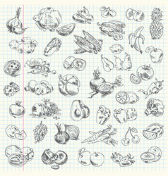 Freehand drawing fruit and vegetables vector