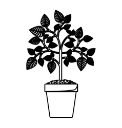 Isolated and silhouette plant design vector