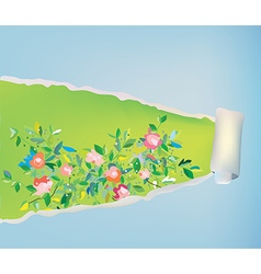 Paper scroll background with flowers - abstract vector