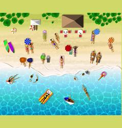 Top view of sunbathing people vector