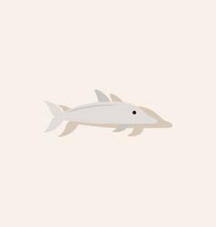 Dolphin delphinus delphis in sticker style vector