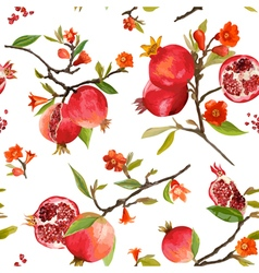 Seamless pattern pomegranate tropical background vector
