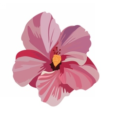 Tropical pink flower isolated vector