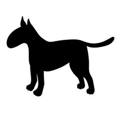 silhouette of bullterrier isolated on white vector image