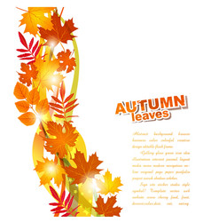 Background with autumn leaves vector