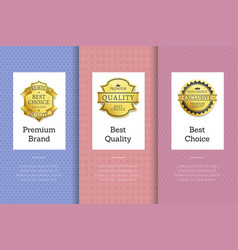 premium brand best quality choice golden label set vector image
