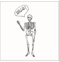 Fun smiling affably waving skeleton vector