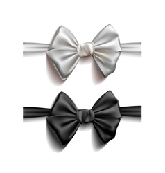Realistic ribbon bows vector