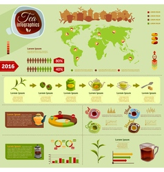 Tea infographic set vector