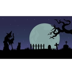 Halloween of witch and cat silhouette vector