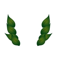 Leaves foliage icon vector