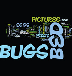 Bed bugs symptoms text background word cloud vector