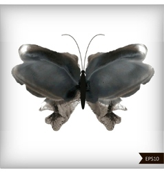 Watercolor black and white butterfly vector