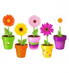 Daisies in pots with pictures vector