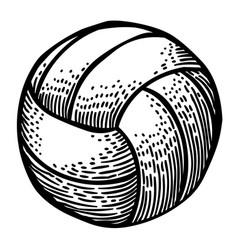 Cartoon image of volleyball icon sport symbol vector