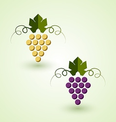 Red and white grape vector