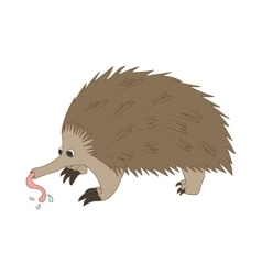 Anteater icon cartoon style vector image vector image