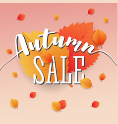 autumn sale square banner background vector image vector image