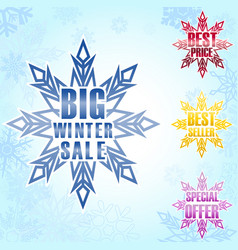 Big winter sale poster background vector