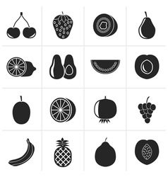 Black Different kind of fruit and icons vector image