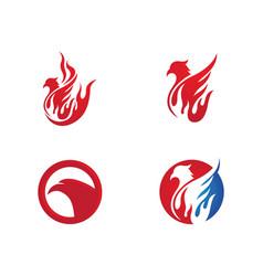 Falcon wing logo template vector
