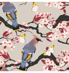Waxwing on the cherry seamless vector