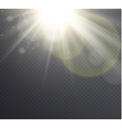 Abstract golden sun flare with rays vector