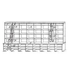 Bifolding store ladder vintage vector