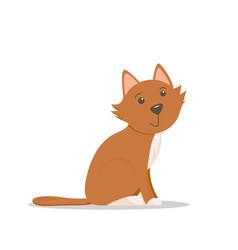 cute sitting cat kitten cartoon vector image