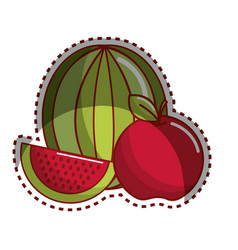 Sticker watermelon and apple fruit icon vector
