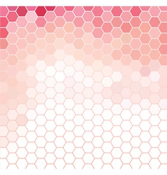 Pink and White Grid Pattern vector image