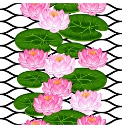 Natural seamless pattern with lotus flowers and vector