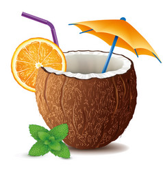 Coconut drink cocktail with mint leaf and orange vector