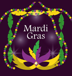Mardi gras carnival masks with feathers beads blur vector