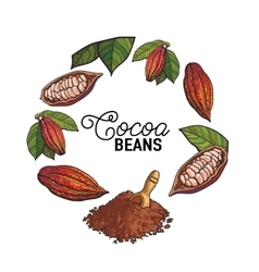 Round frame decoration element of cacao fruit vector image
